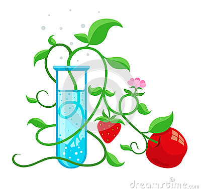 Free GMO Genetically Modified Foods Growing In Test-tube Royalty Free Stock Photos - 51082308