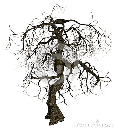 Free Gnarled Old Tree With Bare Branches Stock Photo - 33194330