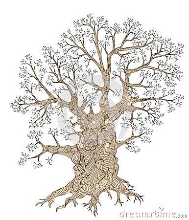 Free Gnarled Tree Stock Photos - 5258563