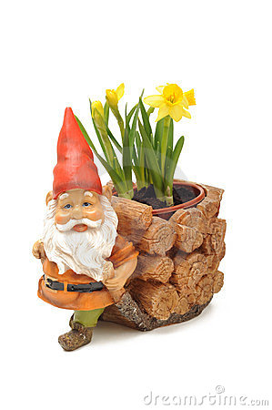 Gnome and flowers