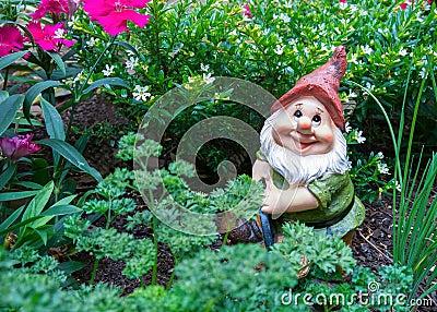 Gnome in garden