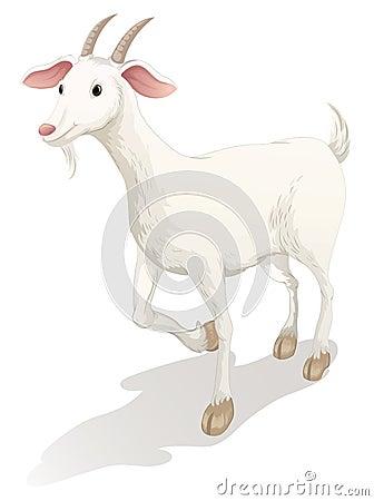 Free Goat Royalty Free Stock Photo - 25874405