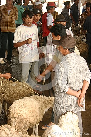 Goats and sheep market Editorial Photography