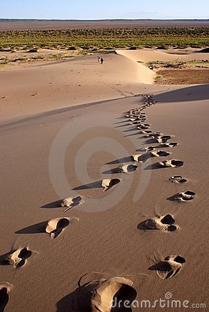 Free Gobi Desert Royalty Free Stock Photo - 22590415