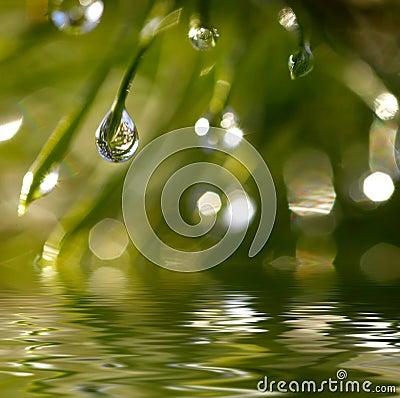 Gocce dell acqua