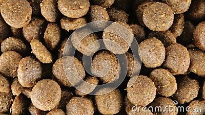 Goede knapperige koekjes voor honden stock video