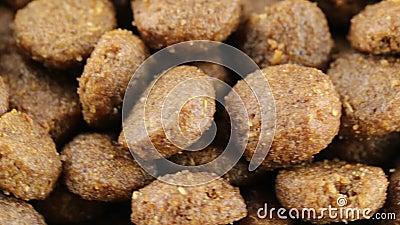 Goede knapperige koekjes voor honden stock videobeelden