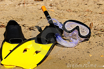 Goggles and flippers