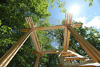 Going green: wood construction