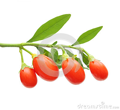 Free Goji Berry Isolated Royalty Free Stock Photos - 35587578