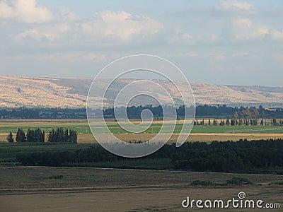 The Golan