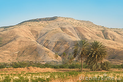The Golan Heights