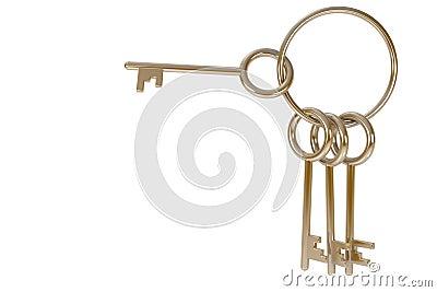 Gold Bunch of keys