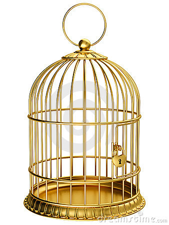 Free Gold Cage Royalty Free Stock Photo - 19903945
