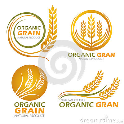 Free Gold Circle Paddy Rice Organic Grain Products And Healthy Food Banner Sign Vector Set Design Royalty Free Stock Photo - 76780335
