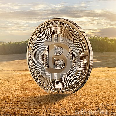 Free Gold Coin Bitcoin On A Background Of A Field Royalty Free Stock Photography - 109722507
