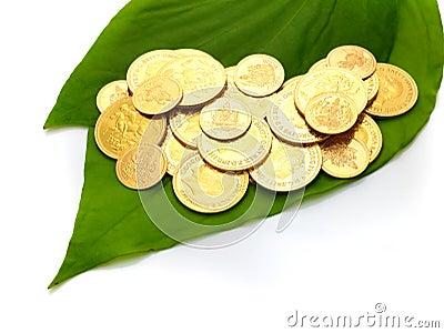 Gold coins on betel leaf