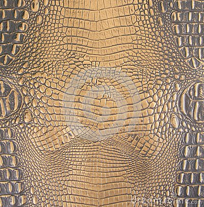Free Gold/Dark Brown Embossed Gator Belly Leather Texture Stock Images - 53681844