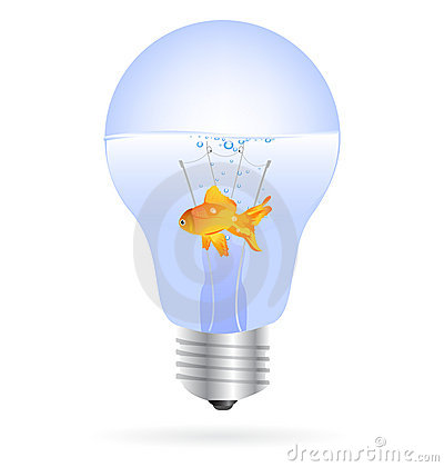 Gold fish in a light bulb vector