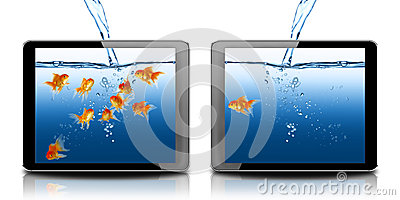 Gold fish in tablet computer pc