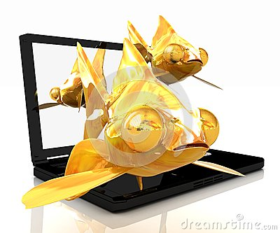 Gold fishes and laptop