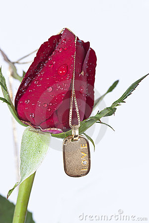 Gold pendant with diamond and red rose