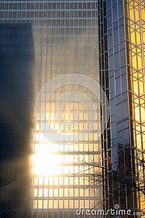 Gold Skyscraper in the fog