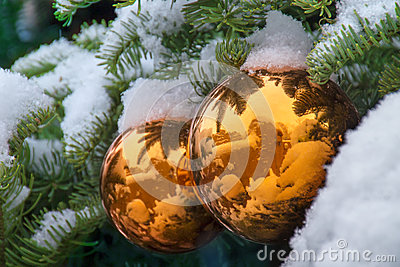 Gold Snow Covered Christmas Tree Ornaments Reflect Santa Fe Adobe Buildings