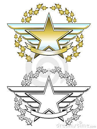 Gold star medal