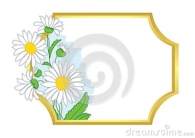 Gold vector frame with white chamomile