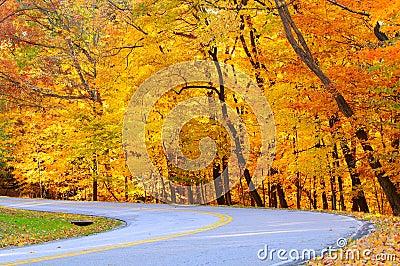 Golden autumn curve