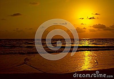 Golden Beach - Goa - India