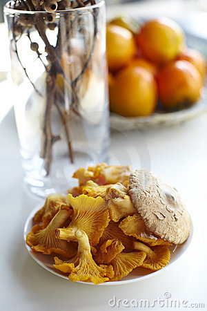 Golden Chanterelle mushrooms