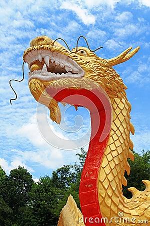 Golden china dragon