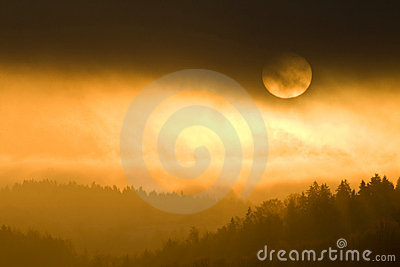 Golden colors of misty sunset
