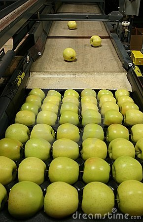 Golden Delicious Apples on a tray