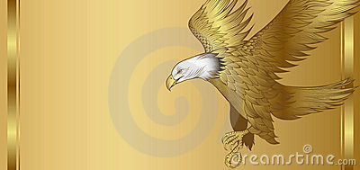 Golden Eagle Background