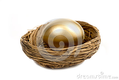 Golden Egg Laying In Nest