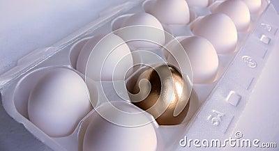 Golden Egg Surprise!