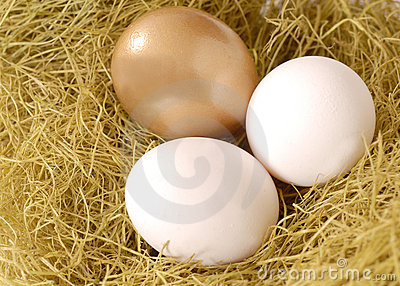 A golden egg and two white eggs in a nest