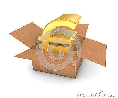 Golden Euro in Box