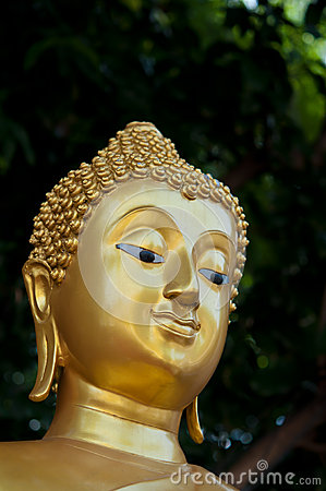 The golden face of Buddha statue