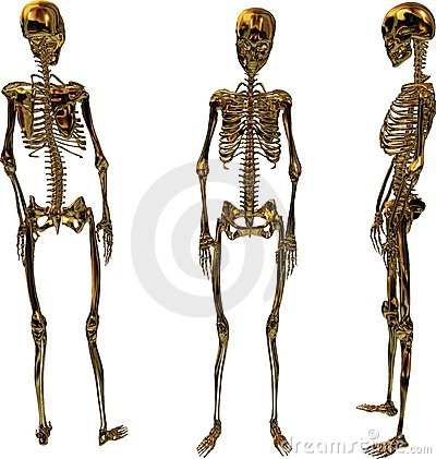 Golden Female Skeletons