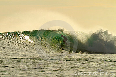 Golden glow surfer in amazing tube