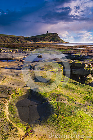 Free Golden Hour Rocks At Kimmeridge On The Dorset Coast Royalty Free Stock Image - 50827156