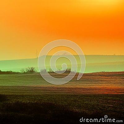 Free Golden Landscape Stock Image - 144834601