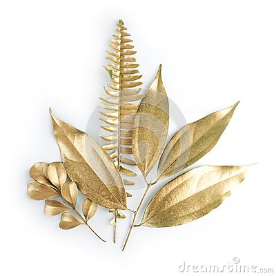 Free Golden Leaf Design Elements. Decoration Elements For Invitation, Wedding Cards, Valentines Day, Greeting Cards. Isolated On White Royalty Free Stock Photos - 99602928