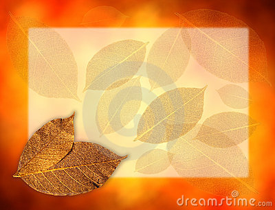 Golden leaves background