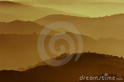 Golden mist in mountain