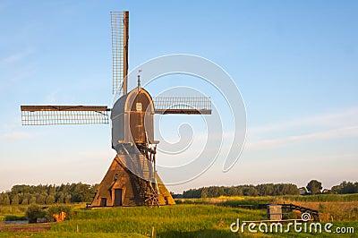 Golden morning light at a Dutch windmill